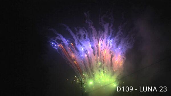 D109-LUNA-23-3