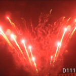 D111-LUNA-2
